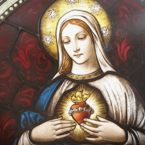 Immaculate Heart of Mary Novena Image