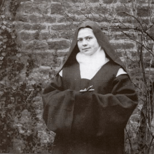 St Elizabeth of the Trinity Novena Image